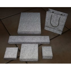 Serie economica Glitter argento